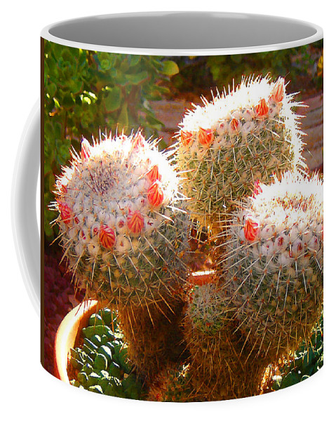 Landscape Coffee Mug featuring the photograph Cactus Buds by Amy Vangsgard