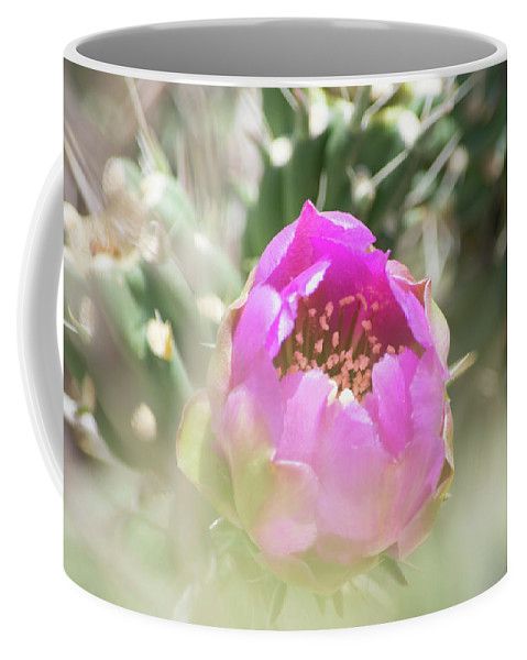 Cactus Coffee Mug featuring the photograph Cactus Flower by Deborah Reinhardt - Adams