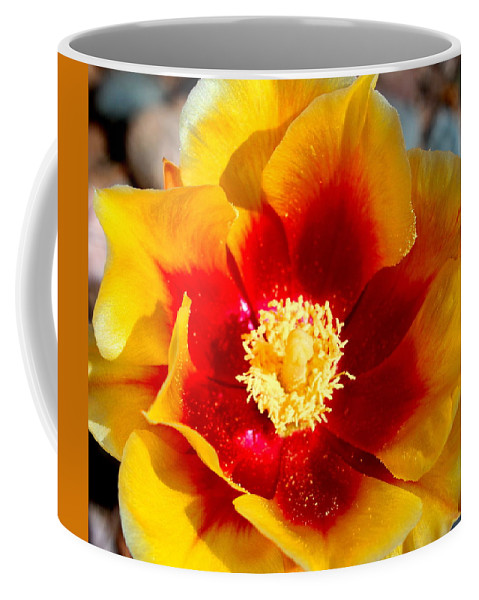 Floral Coffee Mug featuring the photograph Cactus Flower V by M Diane Bonaparte