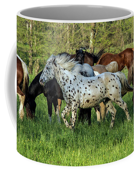 Smoky Mountains Coffee Mug featuring the photograph Cades Cove Horses by Bernd Billmayer