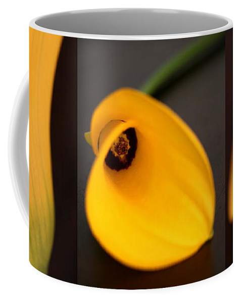 Flowers Coffee Mug featuring the photograph Cala Lily Tryptych by Norah Holsten