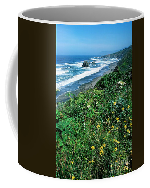 Flowers Coffee Mug featuring the photograph California Coast by Ronnie Glover