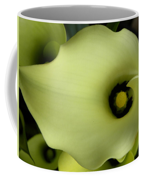 Nature Coffee Mug featuring the photograph Calla Lily by Shannon Turek
