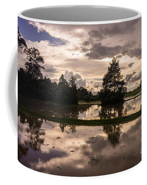 Sunrise Coffee Mug featuring the photograph Cambodian Countryside Rice Fields Reflection by Mike Reid