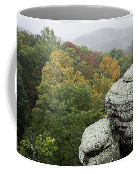 Camel Rock Coffee Mug featuring the photograph Camel Rock Close Up by Andrea Silies