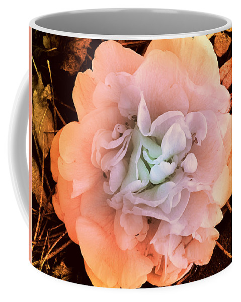 Photography Coffee Mug featuring the photograph Camellia Bloom by Susanne Van Hulst