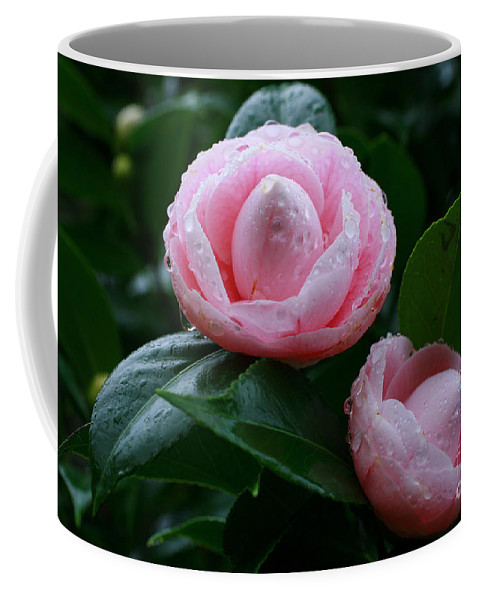 Bloom Coffee Mug featuring the photograph Camellias by Gaspar Avila