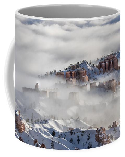 Sandra Bronstein Coffee Mug featuring the photograph Camouflage - Bryce Canyon, Utah by Sandra Bronstein
