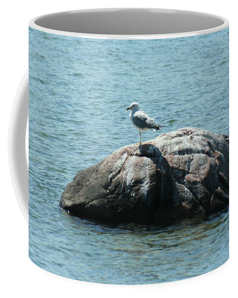 Cana Island Coffee Mug featuring the mixed media Cana Island Wi by Tommy Anderson