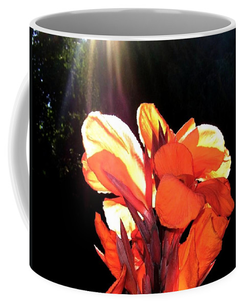 Canna Lily Coffee Mug featuring the photograph Canna Lily by Will Borden