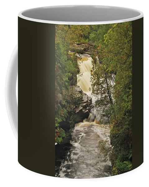 Michigan Coffee Mug featuring the photograph Canyon Falls 2 by Michael Peychich