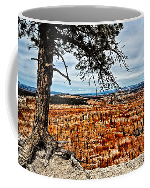 Art Coffee Mug featuring the photograph Canyon Overlook by Christopher Holmes
