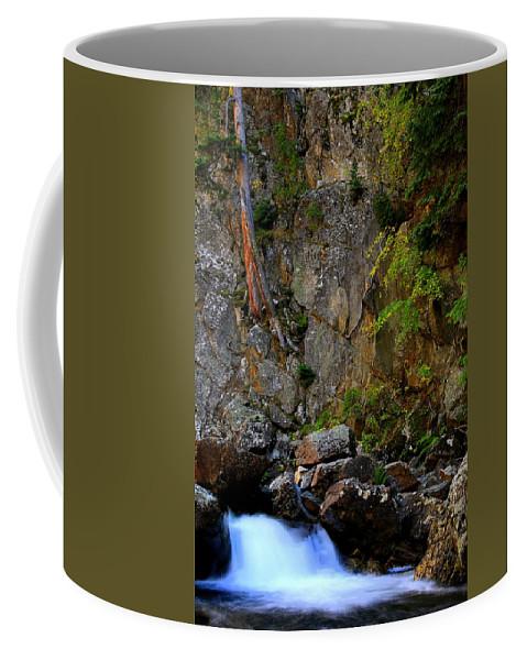Colorado Coffee Mug featuring the photograph Canyon Wall by Bill Keiran