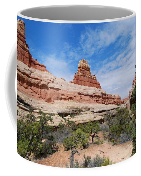 Canyonlands National Park Coffee Mug featuring the photograph Canyonlands Spring Landscape by Cascade Colors
