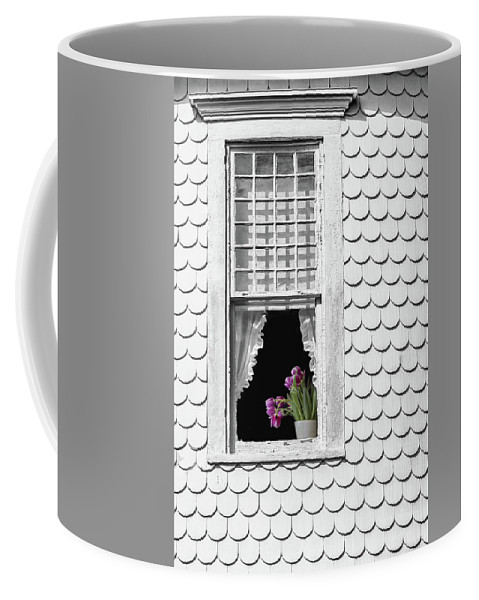 Architecture Coffee Mug featuring the photograph Cape Cod Victorian Lady by Joy Schmitz