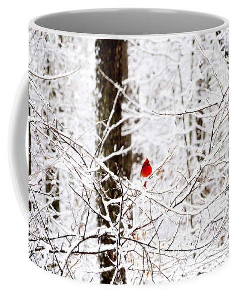 Cardinal Coffee Mug featuring the photograph Cardinal In The Snow by Charles Bacon Jr