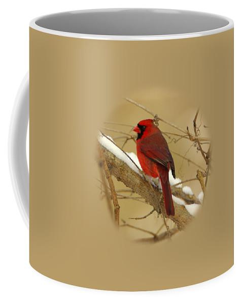Coffee Mug featuring the photograph Cardinal In Winter by John Harmon