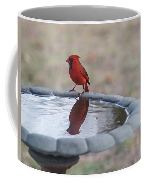 Terry Deluco Coffee Mug featuring the photograph Cardinal Reflection by Terry DeLuco