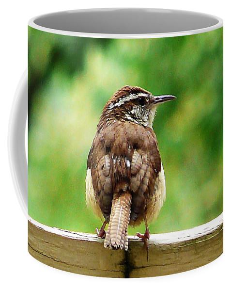 Coffee Mug featuring the photograph Carolina Wren by Bill Shuman