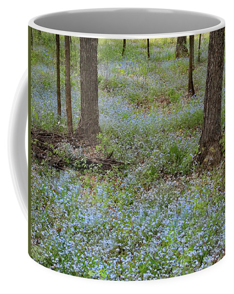 Peninsula State Park Coffee Mug featuring the photograph Carpet Of Blue by David T Wilkinson