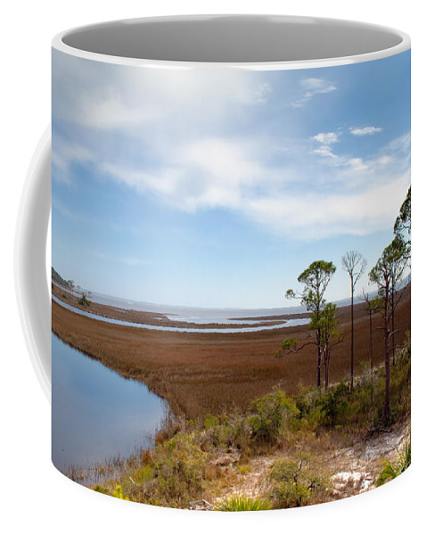 Landscape Coffee Mug featuring the photograph Carrabelle Salt Marshes by Rich Leighton