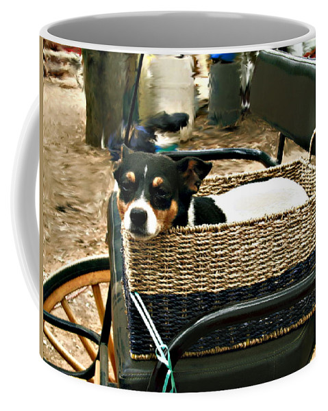 Dog Coffee Mug featuring the photograph Carriage Dog by Amie Ebert
