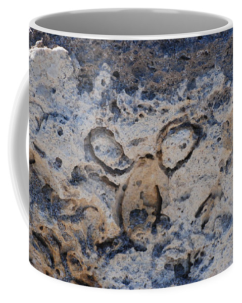 Ocean Coffee Mug featuring the photograph Carved Catface by Rob Hans
