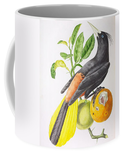 Cassique Coffee Mug featuring the painting Cassique Huppe by Jean Theodore Descourtilz