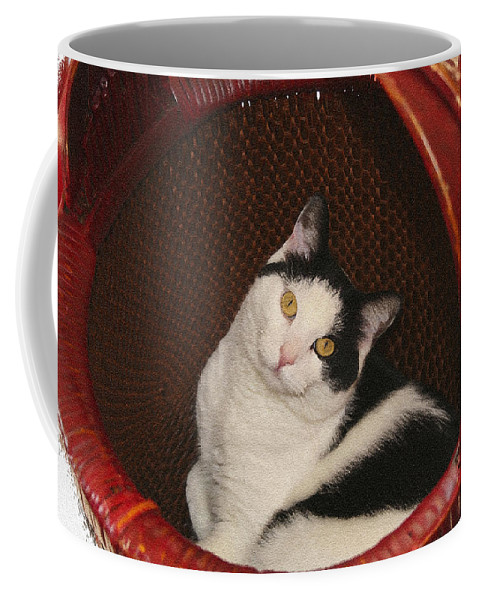 Cat Coffee Mug featuring the photograph Cat In A Basket by Margie Wildblood