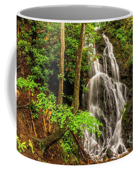 Great Smoky Mountains National Park Coffee Mug featuring the photograph Cataract Falls In Great Smoky Mountains National Park by Larry Knupp