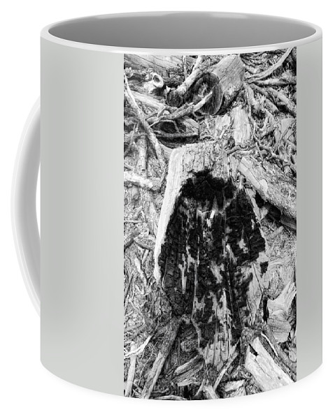 Woo Coffee Mug featuring the photograph Catastrophe by Donna Blackhall