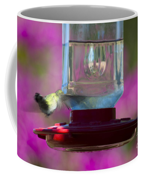 Clay Coffee Mug featuring the photograph Catch Me If You Can by Clayton Bruster