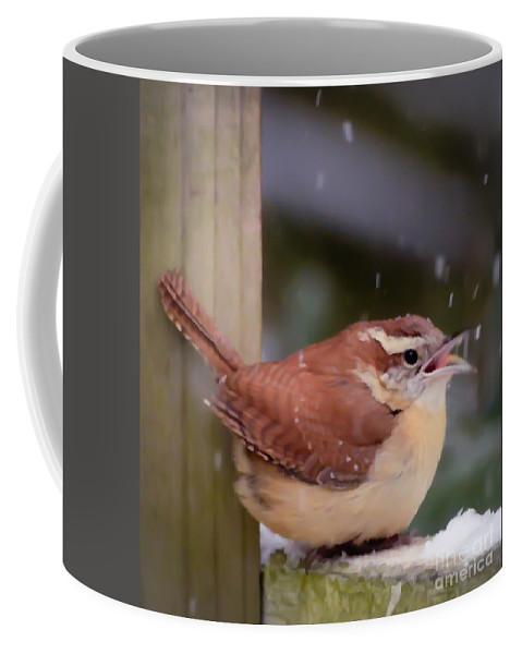 Carolina Wren Coffee Mug featuring the photograph Catching Snowflakes by Kerri Farley
