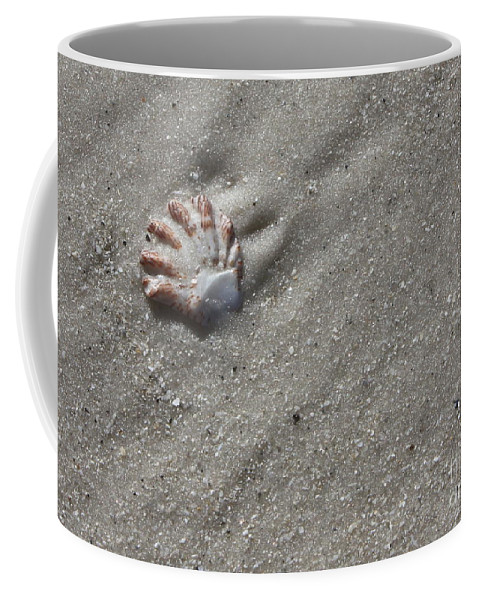 Shell Coffee Mug featuring the photograph Cat's Paw by Carol Groenen