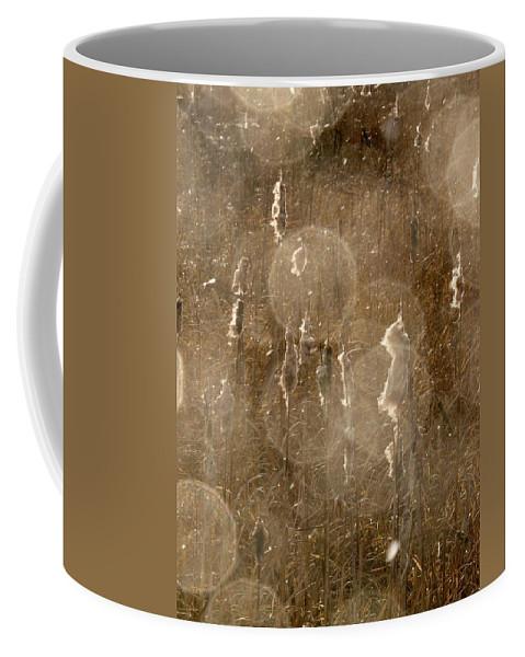 Lehtokukka Coffee Mug featuring the photograph Cattails In Snowstorm 5 by Jouko Lehto