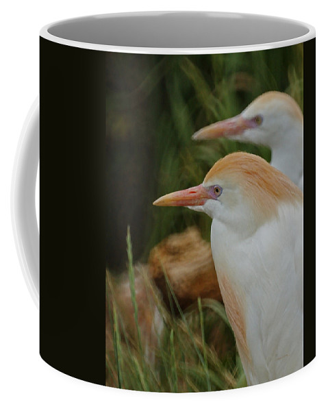 Animals Coffee Mug featuring the mixed media Cattle Egrets Dry Brushed by Ernie Echols