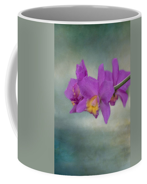 Orchid Coffee Mug featuring the photograph Cattleya Orchid by Kim Hojnacki
