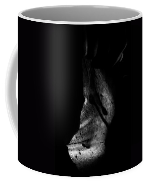 Nude Coffee Mug featuring the photograph Cave Of Seduction by Pavel Jelinek
