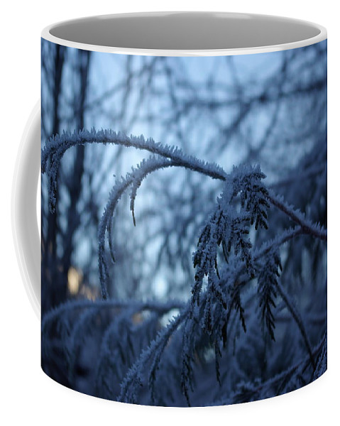 Cedar Coffee Mug featuring the photograph Cedars Of Ice by Cindy Johnston