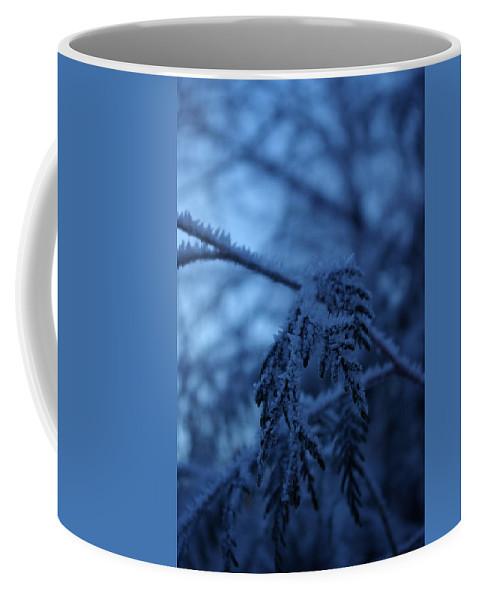 Cedar Coffee Mug featuring the photograph Cedars Of Ice II by Cindy Johnston