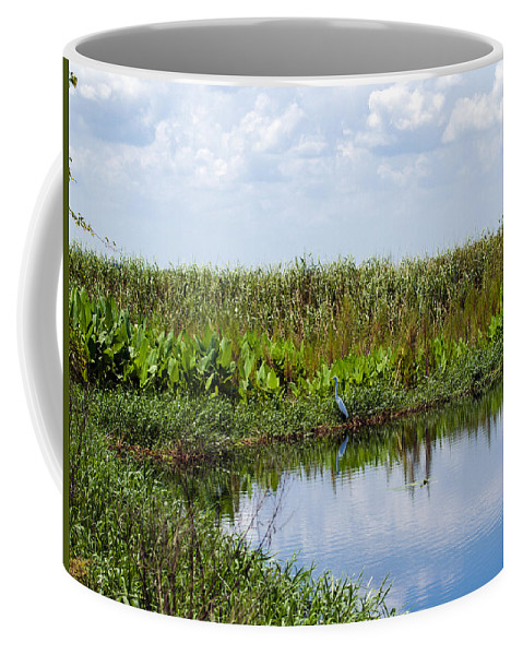 Florida; River; St; Johns; Saint; John; Flow; Flows; North; South D;; Flowing; Current; Back Coffee Mug featuring the photograph Central Florida Backwater by Allan Hughes