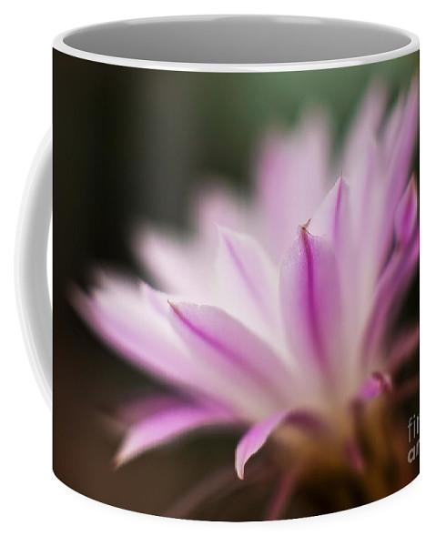 Cereus Coffee Mug featuring the photograph Cereus Glow by Mike Reid