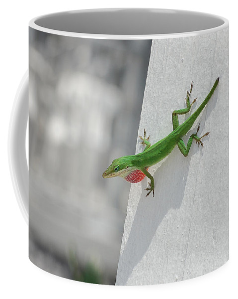 Chameleon Coffee Mug featuring the photograph Chameleon by Robert Meanor