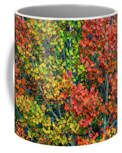 Color Coffee Mug featuring the photograph Changing by Joy Watson