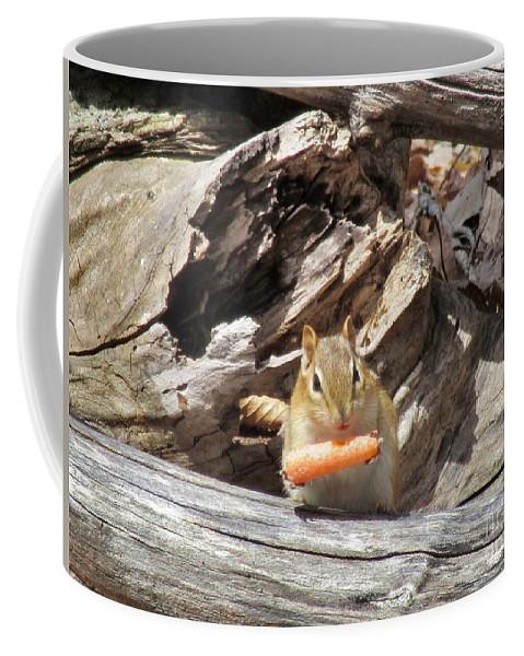 Nature Coffee Mug featuring the photograph Charming Chipmunk by Elizabeth Duggan