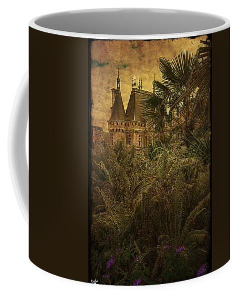 Chateau Coffee Mug featuring the photograph Chateau In The Jungle by Chris Lord