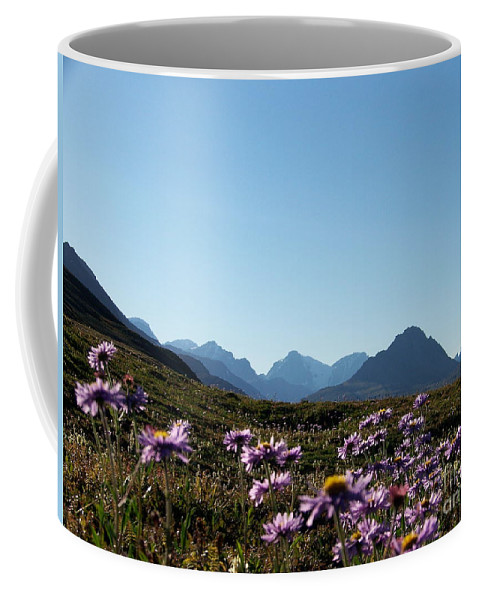 Middle Of Summer Coffee Mug featuring the photograph Cheerful Alpine Daisy Meadows by Greg Hammond