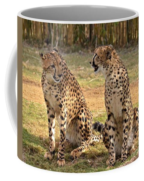 Cheetah Coffee Mug featuring the photograph Cheetah Chat 2 by Carol Bradley
