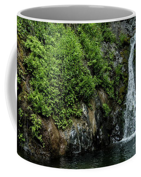 Chemisal Falls Coffee Mug featuring the photograph Chemisal Falls At Vichy Springs In Ukiah In Mendocino County, California by David Oppenheimer