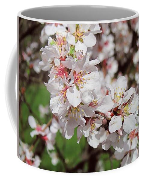 Flower Coffee Mug featuring the digital art Cherry Blossoms by Doug Morgan